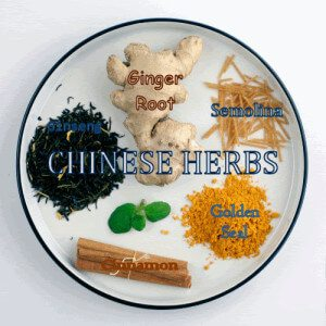 Chinese Herbs - Phoenix AZ